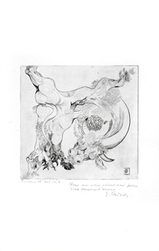 Peterdi Gabor : Dedicated original etching : Methamorphosis