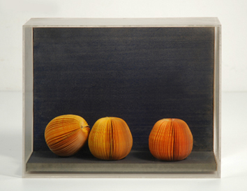 D. Pavlos : Signed multiple : Still life with fruits