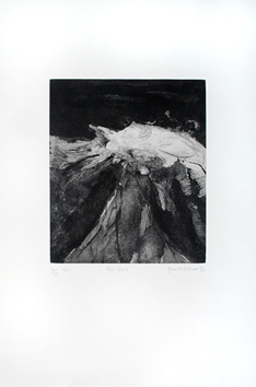 Signed etching aquatint de  : Rêve fossile