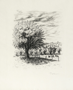 Gravure originale signée de  : Le Cahier vert II