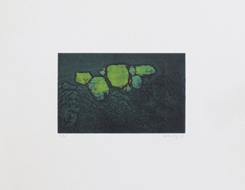 Original signed etching de La Bourdonnaye A. (de) : Green composition