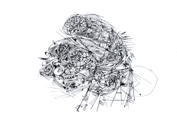 Jorn Asger : Lithographie : Huit Lithographies II