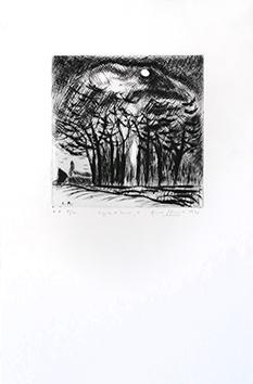 Gravure originale signée de  : Lignes d'hiver 1