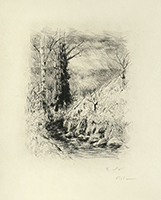 Original signed etching de  : Le cahier vert - Hors Texte, Plate 6 (2nd state)