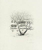 Original signed etching de  : Le cahier vert - Hors Texte, Plate 5
