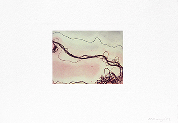 Gravure originale signée de Oxley Nigel : The snowdonia suite - Mist