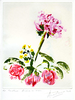 Original signed monotype de Mounic Anne : Pivoine et roses