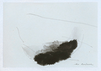 Signed drawing in ink de  : Composition without title XXX