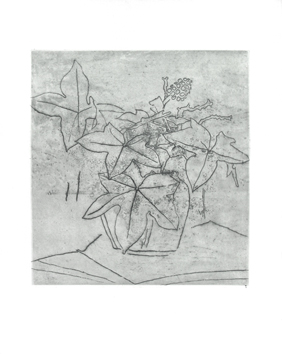 Original etching de Braque Georges : Le lierre