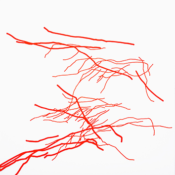Original signed drawing de  : Branches XXIV