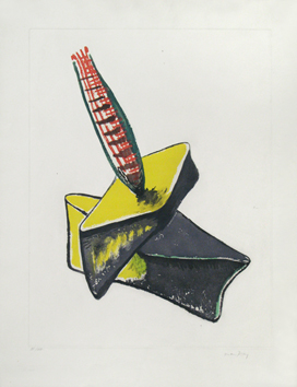 Original signed aquatint de  : Cactus, Plate VIII