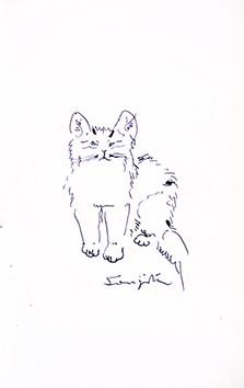 Dessin original signé de  : Chat