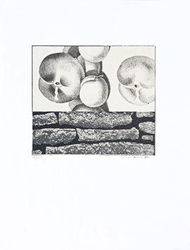 Signed lithograph de  : Fruits défendus