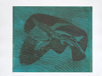 Original signed etching de  : Requin