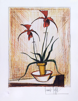 Original signed etching de  : Orchids