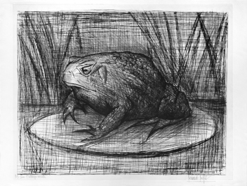 Original signed drypoint de Buffet Bernard : The toad
