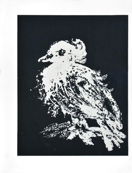 Original lithograph de  : The small dove
