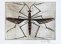 Signierte originale Kaltnadelradierung de  : Insecte Brun