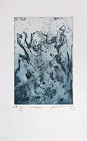 Original signed etching de  : L'enragée