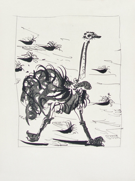 Original drypoint de  : The ostrich