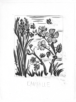 Original aquatint de Picasso Pablo : L'Abeille