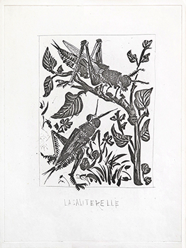 Original aquatint de  : La Sauterelle
