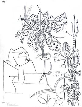 Lithographie originale signée de  : Plantes tropicales