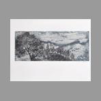 Original signed aquatint de Woda Albert : The thunderstorm