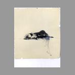 Original signed lithograph de Bruni Bruno : Nudino