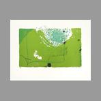 Original signed lithograph de Kimura Chuta : The green garden