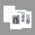 Ajmone Portfolio avec lithographies