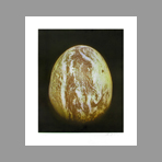 Original signed aquatint de Jacquet Alain : The Egg II