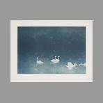 Original lithograph de Estampe Moderne : Les cygnes