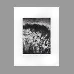 Signed etching aquatint de Dublineau Yannick : Entre embruns et taillis