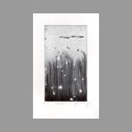 Original signed drypoint de Dublineau Yannick : Fireflies