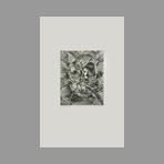 Original signed etching de Baumgart Isolde : Plumage
