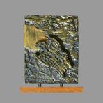 Papart Max, DLM n°E.A. II/IV (exemplaire d'artiste)