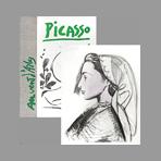 Picasso Livre illustré