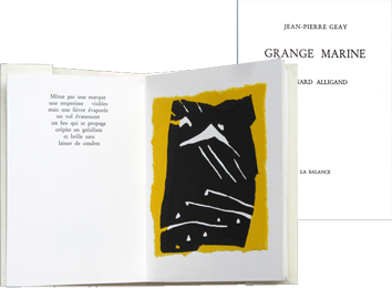 Modern illustrated book de  : Grange Marine