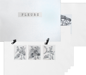 Book with etchings de  : Fleurs