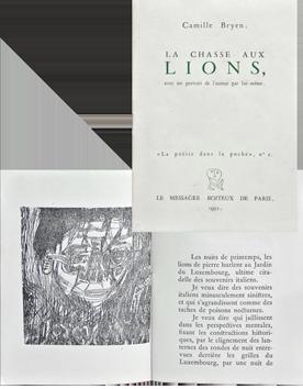 Livres illustrés de  : La chasse aux lions